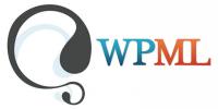¿Cómo conectar WPML con los servicios de AT?