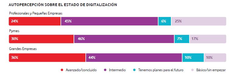 transformación digital empresas españolas percepcion